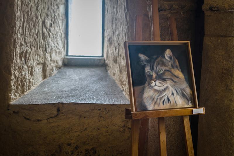 Exposition-peinture-El-Plume-et-poilsDSC_2041-w